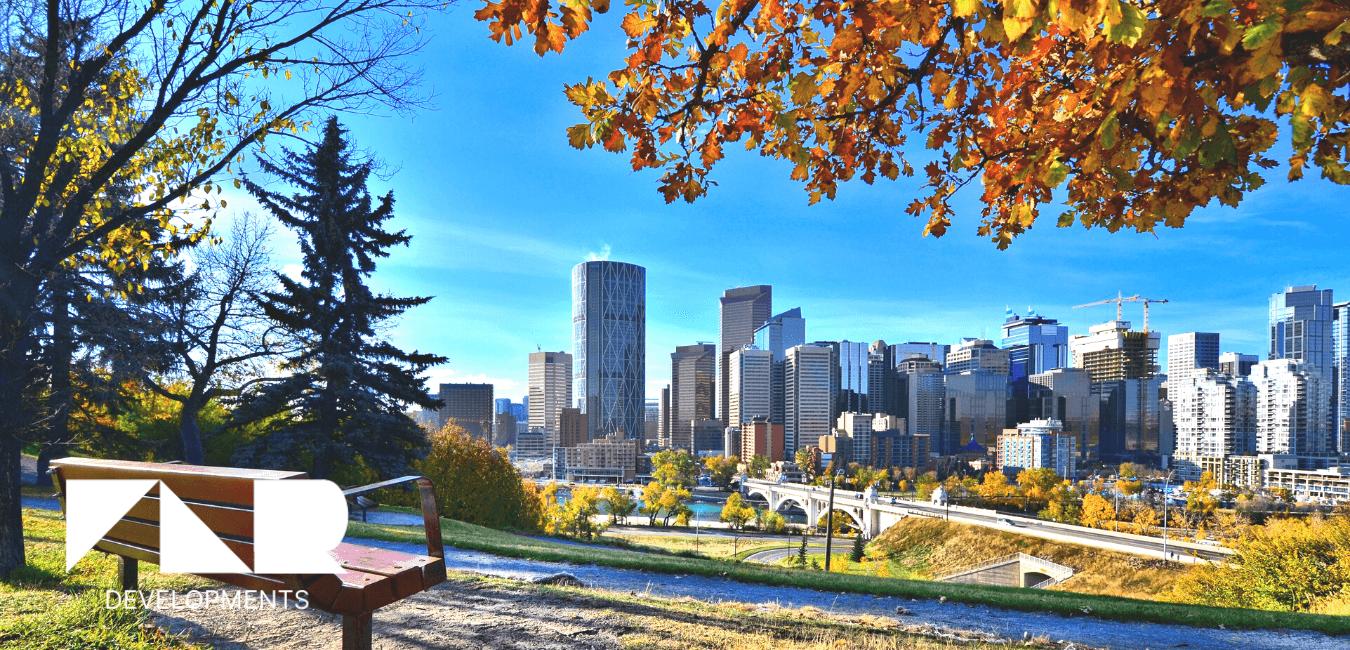 Building a Backyard Suite in Calgary